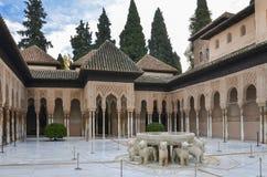 Alhambra - lew fontanna w Granada, Hiszpania zdjęcia stock