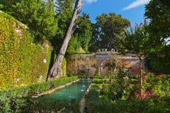 Alhambra palace at Granada Spain Royalty Free Stock Photo