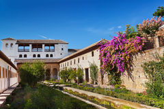 Alhambra palace at Granada Spain. Architecture and nature background Stock Images