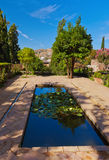 Alhambra palace at Granada Spain. Architecture and nature background Royalty Free Stock Image
