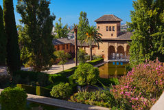 Alhambra palace at Granada Spain. Architecture and nature background Royalty Free Stock Images