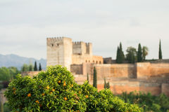 Alhambra palace in spain Stock Image