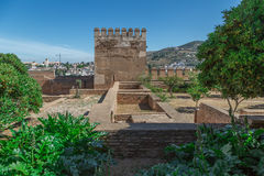 Alhambra. Ruins, tower and garden Stock Images