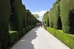 Alhambra som arbeta i trädgården, Granada, Spanien Arkivfoto