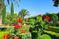 Alhambra tuinen in Granada, Spanje royalty-vrije stock afbeeldingen