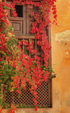 Alhambra Wall Window Fall Leaves Granada Andalusia Spain Stock Photography