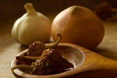 Alho, cebola, pimentas secadas Imagem de Stock