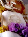 Alho e pot-pourri II Imagens de Stock Royalty Free