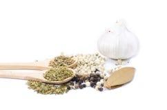 alho, folha de louro, blackpepper, whitepepper, tomilho, cravo-da-índia, folha da manjericão Fotos de Stock Royalty Free