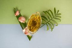 Alho fresco, limão, azeite e folhas tropicais em um azul-gre Imagens de Stock Royalty Free