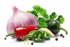 Alho, Jalapenos, grãos de pimenta, ervas, trajetos Foto de Stock Royalty Free