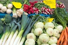 Alho-porro, couve-rábano e outros vegetais Fotografia de Stock Royalty Free