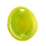 Alho-porro fresco Foto de Stock