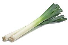 Alho-porro verde fotografia de stock