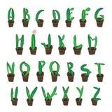 Alhpabet кактуса Ботаническое письмо для дизайна Стоковые Изображения