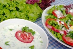 Aliño de ensaladas del yogur Fotos de archivo libres de regalías