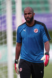 Ali AL Habsi of Reading FC Stock Photos