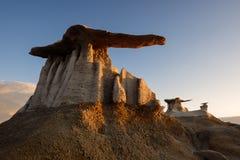 Ali del deserto Fotografia Stock Libera da Diritti