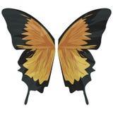 Ali della farfalla con il percorso di residuo della potatura meccanica Fotografia Stock
