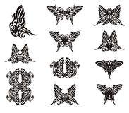 Ali della farfalla dalla forma del pappagallo Fotografia Stock