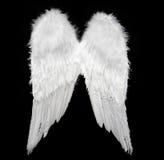 Ali di angelo Fotografia Stock Libera da Diritti