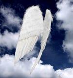 Ali di angelo Fotografia Stock