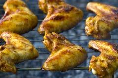 Ali di pollo calde sul vassoio di cottura Immagine Stock