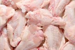 Ali di pollo crude Fotografia Stock