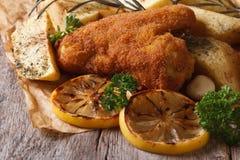 Ali di pollo in primo piano della pastella Stile rustico orizzontale Immagini Stock Libere da Diritti