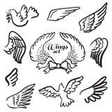 Ali. Insieme degli elementi di progettazione. Royalty Illustrazione gratis