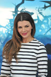 Ali Landry Stock Photography