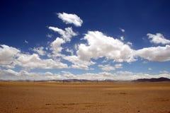 Ali, terre et ciel Images libres de droits