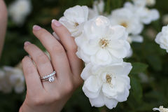 Aliança de casamento Imagem de Stock Royalty Free