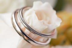 Aliança de casamento com rosas brancas Fotos de Stock