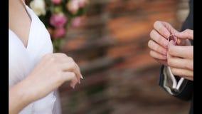 Aliança de casamento do molho vídeos de arquivo