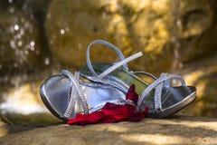 Aliança de casamento nas pétalas com sapatas e cachoeira no fundo Foto de Stock Royalty Free