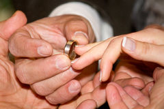 Aliança de casamento para ela Fotografia de Stock Royalty Free