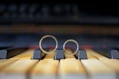 Alianças de casamento Imagens de Stock