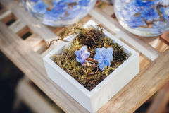 Alianças de casamento bonitas nas caixas de madeira brancas com as flores pequenas azuis Decoração do casamento Fotografia de Stock Royalty Free