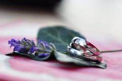 Alianças de casamento de prata Foto de Stock Royalty Free