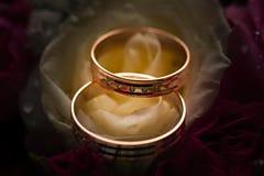 Alianças de casamento do ouro na flor. Fotografia de Stock Royalty Free