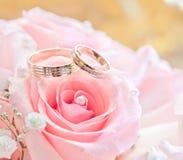 Alianças de casamento do ouro na flor. Decoração Fotos de Stock