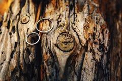 Alianças de casamento do ouro na madeira velha em cores mornas Imagens de Stock Royalty Free