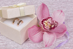 Alianças de casamento e flor do orhid imagem de stock