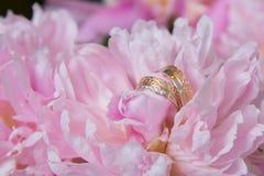 Alianças de casamento e flores da peônia cor-de-rosa Fotografia de Stock Royalty Free