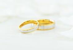 Alianças de casamento e pétalas brancas Fotos de Stock Royalty Free