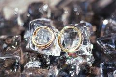Alianças de casamento em cubos de gelo Foto de Stock Royalty Free
