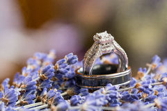 Alianças de casamento em Lavendar Flowers Imagens de Stock