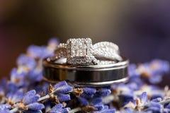 Alianças de casamento em Lavendar Flowers Imagens de Stock Royalty Free