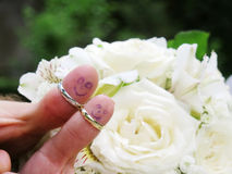 Alianças de casamento em seus noivos dos marrieds dos povos dos dedos, homens pequenos engraçados pintados Imagem de Stock Royalty Free